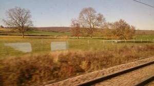 パリから南仏に向かう列車の窓から見える景色は、どこまで行っても大草原が続く